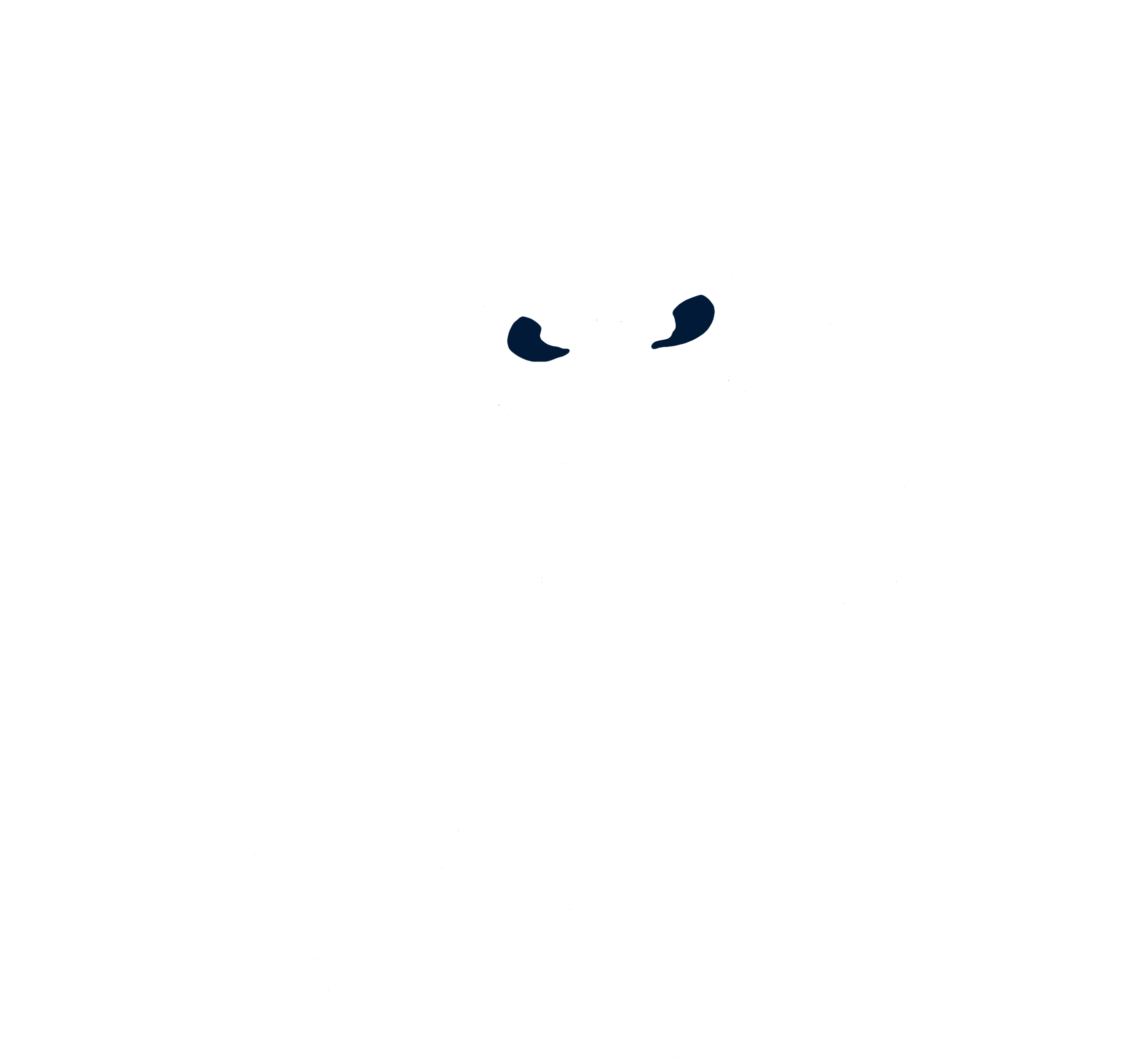 Bunbury 'Stingers' Masters Swimming Club Incorporated